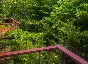 recensione baanrai-sayoknoi-resort