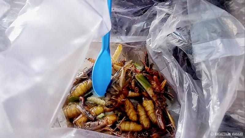 Mangiare insetti thailandia