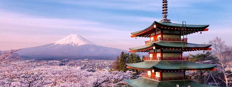Itinerario Giappone due settimane fai da te [FIORITURA CILIEGI]