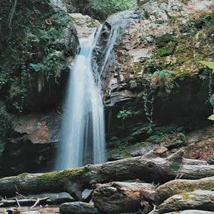 parco nazionale della sila piccola
