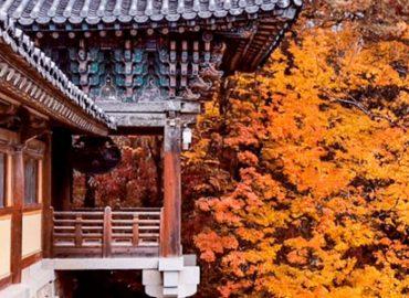 itinerario corea del sud 15 giorni